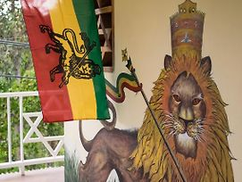 The Lion House Jamaica photos Exterior