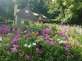 Contented Cottage Bed And Breakfast photos Exterior