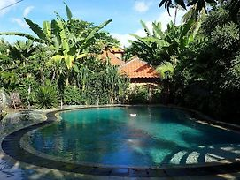 Hibiscus House Bali photos Exterior
