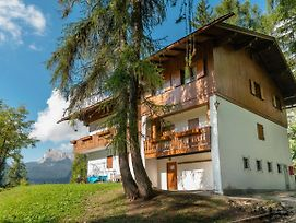 Chalet Pocol - Stayincortina photos Exterior