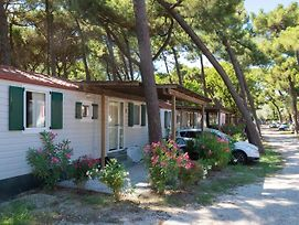 Nicely Furnished And Detached Chalet On The Adriatic Coast photos Exterior