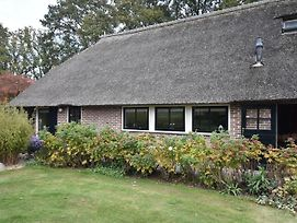 Lovely Apartment In Dwingeloo Drenthe With Terrace photos Exterior
