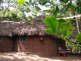 Selous Adili Forest Camp photos Exterior