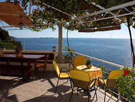 Seaside House With A Swimming Pool Stikovica Dubrovnik 4708 photos Exterior