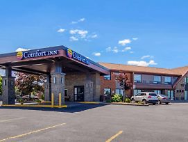 Comfort Inn St. Catharines photos Exterior