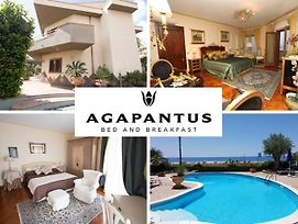 Agapantus Bed & Breakfast photos Exterior