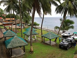 Saltitude Dive & Beach Resort photos Exterior