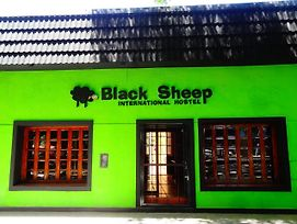 Black Sheep International Hostel photos Exterior