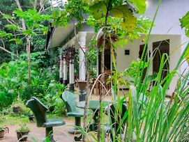 Sigiriya Mana B&B photos Exterior