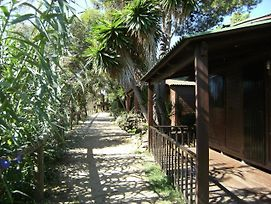 Bungalows Club Aire Libre photos Exterior