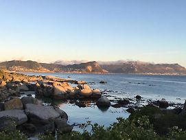 Bosky Dell On Boulders Beach photos Exterior