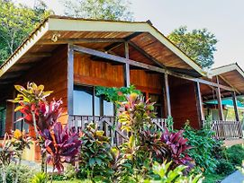 Heliconias Lodge And Rainforest photos Exterior