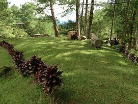 Banaue Ethnic Village And Pine Forest Resort photos Exterior