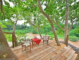 Climbing Lion Tree House photos Exterior