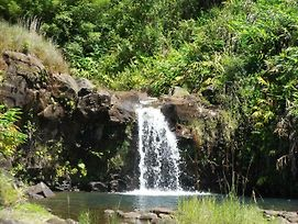 Heavenly Enchanting Waterfall In Hilo photos Exterior