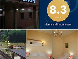 Hostel Mignon Mamaia photos Exterior