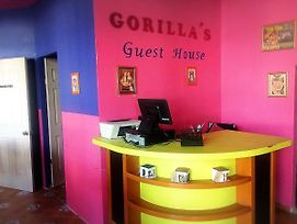 Gorilla S Guest House photos Exterior