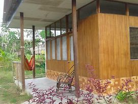 Amazonia Guest House photos Exterior