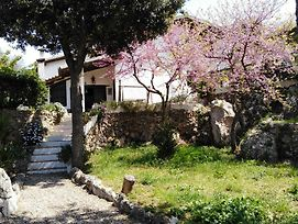 B&B La Casa Di Cosa photos Exterior