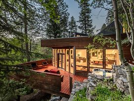 Modern Treehouse Home photos Exterior