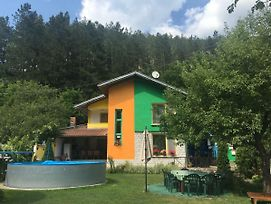 Guest House Villa Colour photos Exterior
