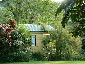 Daintree Valley Haven photos Exterior