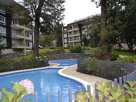 Nice Apartment In Pucon Chile photos Exterior