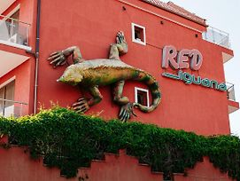 Red Iguana Hotel photos Exterior