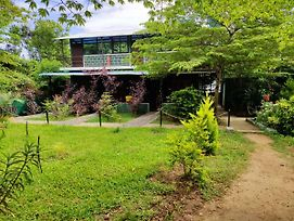 Green Hills Farm And Guest House photos Exterior