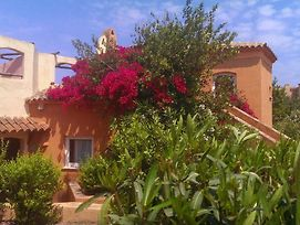 Walk To Beach In 6 Mins From Cottage Apartment With Lovely Sea Views And Terrace photos Exterior