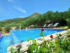 Family Friendly House With A Swimming Pool Bol, Brac - 14291 photos Exterior