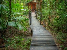 Daintree Wilderness Lodge photos Exterior