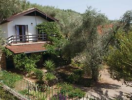 Four-Bedroom Holiday Home 0 In Dobre Vode photos Exterior