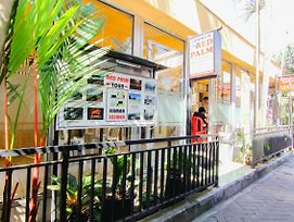 Red Palm Homestay photos Exterior