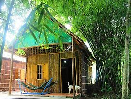 Green Village Homestay photos Exterior