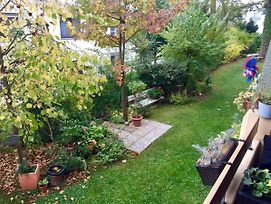 Appartement-105 photos Exterior