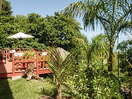 Charming Villa On The Island Of Rodrigues, With Garden And Ocean Views photos Exterior