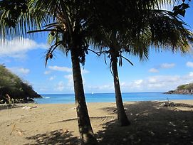 Enchanting Basse-Terre Bungalow Just 150 Metres From Petite Anse Beach photos Exterior