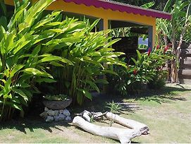 Bungalow With One Bedroom In Sainte-Anne, With Pool Access, Enclosed G photos Exterior
