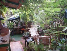 B&B The Garden photos Room