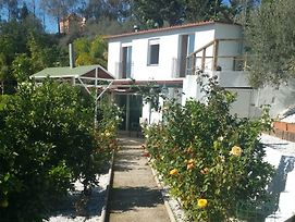 House With 3 Bedrooms In Estepona, With Enclosed Garden And Wifi - 1 K photos Exterior