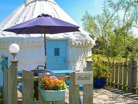 Bluebell Yurt photos Exterior