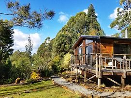 Southern Forest Accommodation photos Exterior