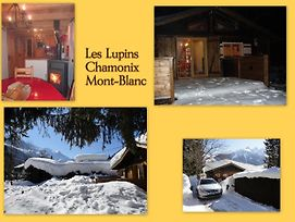 Chalet Les Lupins photos Exterior