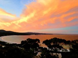 Dolphin Lookout Cottage - Amazing Views Of The Bay Of Fires photos Exterior