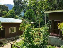 Bwindi Guest House photos Exterior
