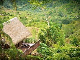 Pura Vida Ecolodge photos Exterior