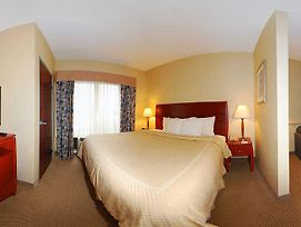 Comfort Suites South photos Room