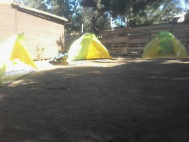 Colors Of Soul Camping, Ecologycal, Hippie, International Site photos Exterior