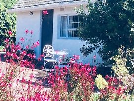 Cozy Quirky Cottage Constantia photos Exterior